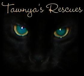 Welcome to Tawnya's Treasures!
